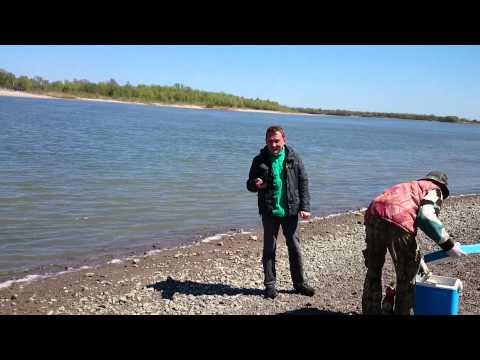 рыбалка на крыму на стерегущем