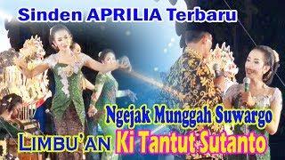 Video Sinden Apri Terbaru Limbu'an Ki Tantut Sutanto MP3, 3GP, MP4, WEBM, AVI, FLV Mei 2019
