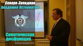 Соматическая дисфункция — Новосельцев С.В. — видео