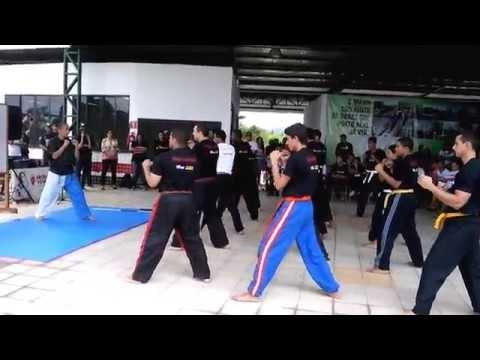 Apresentação de kickboxing da ARAM em Porto Real no evento contra as drogas.