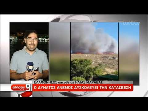 Υπό μερικό έλεγχο οι πυρκαγιές σε Ζούμπερι, Μαραθώνα, Eλαφόνησο | 10/08/2019 | ΕΡΤ