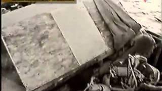 Фитиль «Быль о рыбаках и рыбке» (1963)