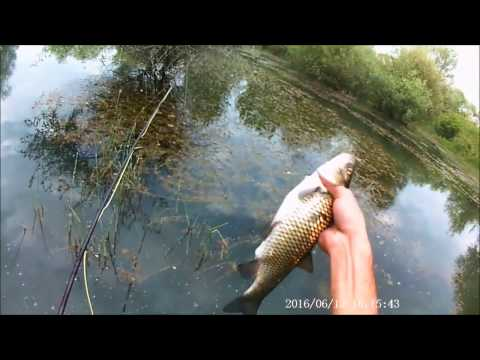 Fly fishing a chub 2017 (видео)