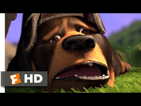 Over the Hedge - Doggie Disaster | Fandango Family