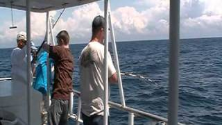 Deep-Sea Fishing Myrtle Beach | Hurricane Fleet