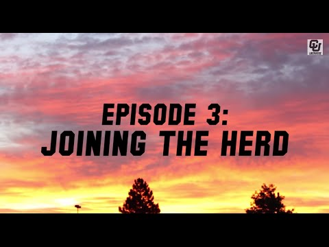 Buffs All-Access | Episode 3: Joining The Herd