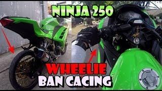 Video NINJA 250 PAKAI BAN CACING TESTRIDE WHEELIE MP3, 3GP, MP4, WEBM, AVI, FLV Januari 2019
