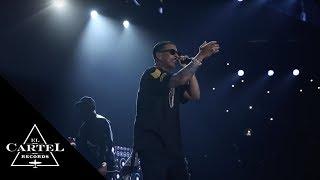 Daddy Yankee – The Kingdom (Florida, USA) (2016) videos