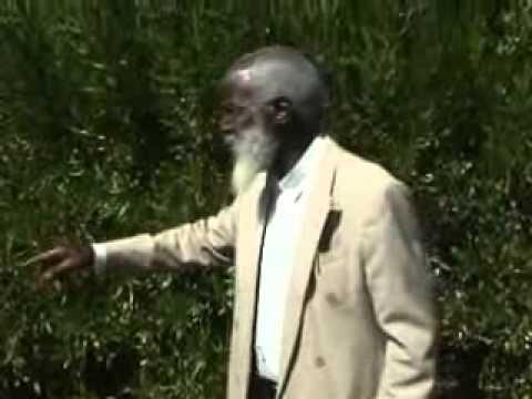 paul mwazha - Paul Mwazha in 2007, his trip from Francistown to Bulawayo. The Teaching, persuades the church to pay reverence to the Almighty God and submission to His wil...