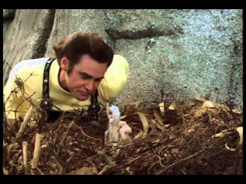 Top 7 Funniest Ace Ventura Scenes