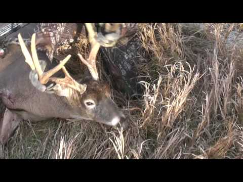 BIG BUCK DOWN . . . deer hunting video