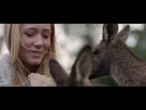 Reimagine Tasmania's tourism future