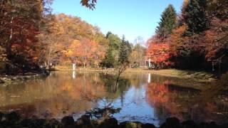 Otoño y el estanque