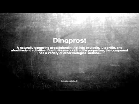 Medical vocabulary: What does Dinoprost mean