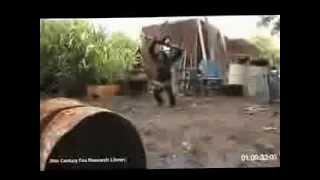 Mono Con AK47