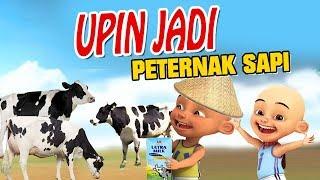 Video Upin ipin Jadi Peternak Sapi , Upin senang MP3, 3GP, MP4, WEBM, AVI, FLV September 2018