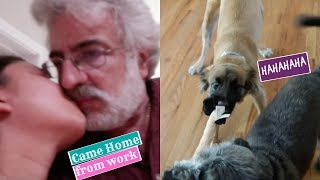 Download Lagu Home From Work + Funny Dog  : MaryAnn.A RealityTV Mp3