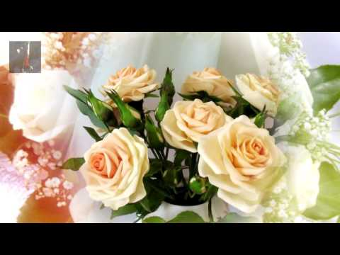 видео королев да и.круг качество с белых роз