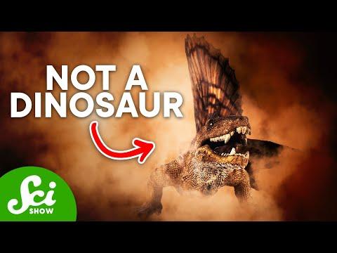 5 Animals That Aren t Dinosaurs