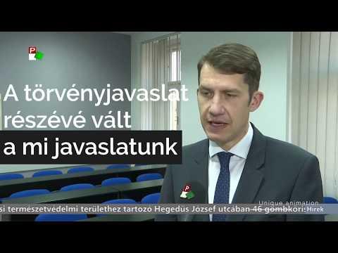 A Magyar Nemzeti Tanács maradhat a Zentai Levéltár társalapítója-cover