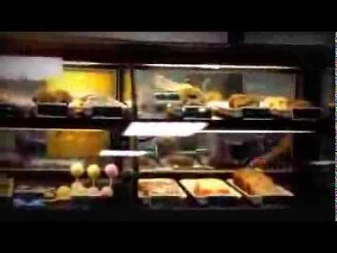 Kiev visits a Humongous PV Fry's marketplace #2