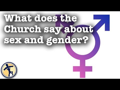 What does the Church say about sex and gender?