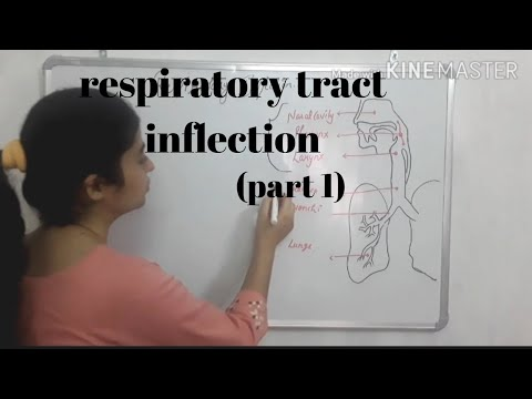 respiratory tract infection /respiratory infection (part 1)