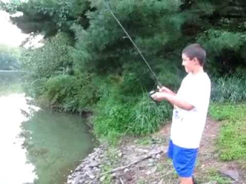 Eel caught pond fishing for Bass fishing in ponds