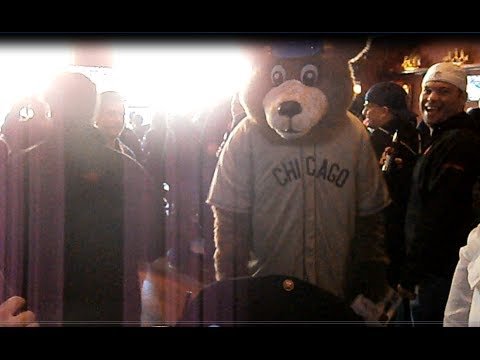 Cubs Mascot Punches Fan in the Face....