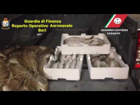 Pesca di frodo con esplosivo nel Golfo di Taranto VIDEO