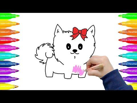 Pintando Animais: Gatinha