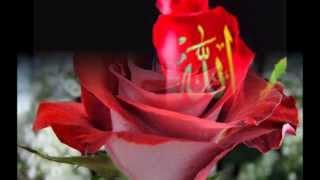 Ilahi Shqip 2014: Fryma Jote,  Rijad Bashi