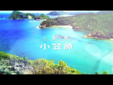 心、動く島。小笠原