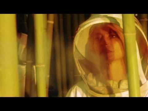 Ividub - Même les abeilles (Album