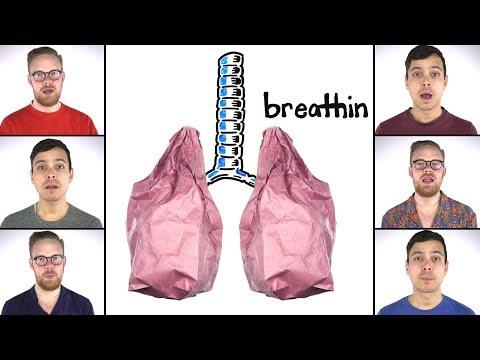 Breathin An Ariana Grande SCIENCE Acapella