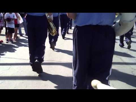 2014 Triton Marching Band - FDSH Homecoming Parade