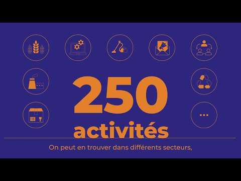 Video UNEA - Les Entreprises Adaptées : des alliés économiques et stratégiques