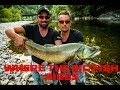 """WHERE THE BIG FISH RISES, Part one Slovenia FULL MOVIE ( Fly fishing, Marble """" MARMORATA """" trout )"""