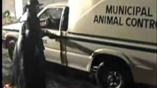 Aldergrove United Kingdom  City new picture : Animal Rights Activists Released 20.000 Minks Fur Farm Aldergrove City BC Canada