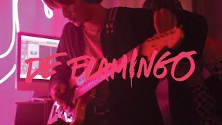 De Flamingo - PINK [Guitar Playthrough]