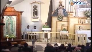El Evangelio comentado 25-06-2017