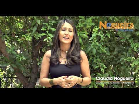 Saludo Fin de Año diputada Claudia Nogueira