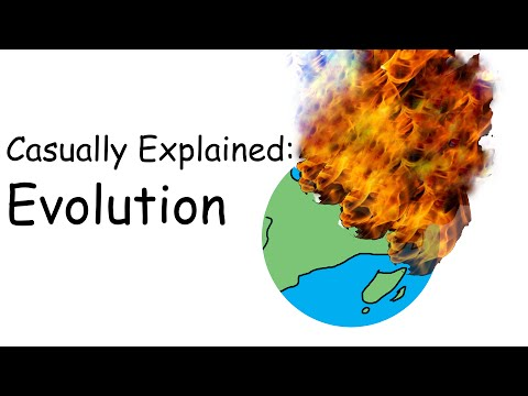 Casually Explained Evolution