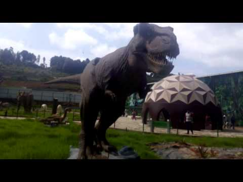 Video Dinosaur Park 1(Ooty,India) download in MP3, 3GP, MP4, WEBM, AVI, FLV January 2017