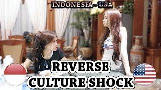 Video REVERSE CULTURE SHOCK: Indonesia-USA MP3, 3GP, MP4, WEBM, AVI, FLV Februari 2018