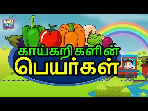 Kids Learn Vegetables Names In Tamil