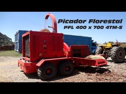 Picador Florestal PFL 400 x 700 M-S triturando troncos inteiros