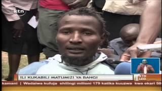 Vijana 6 Wanaswa Wakivuta Bhangi Katika Shamba Linalokuza Mmea Eneo La Khanduyi Kaunti Ya Bungoma