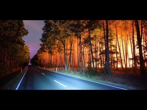 Brandenburg: Waldbrand bei Berlin außer Kontrolle