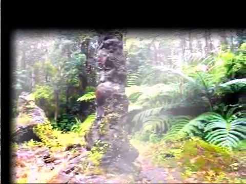 Travel around the world  Big Island, Hawaii  The Puna region